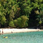 A beach in Manuel Antonio National Park (Costa Rican Pacific)